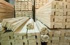Современный строительный материал - древесина